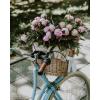 basket of flower photo - Uncategorized -