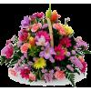 basket w flowers - Plants -