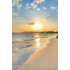 beach - Ozadje -
