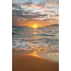 beach - Background -