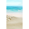 beach - Sfondo -
