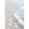 beach - Hintergründe -