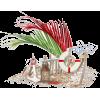 beach - Items -