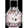 beauty - Fragrances -