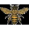 bee illustration - Illustrations -