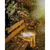 bench book autumn photo - Uncategorized -