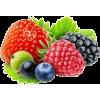 berries - Namirnice -