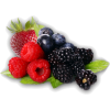 berries - Uncategorized -