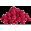 berry - Fruit -