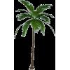 bilje - 植物 -