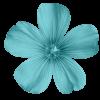 Biljka - Plants -