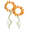 biljke - Rastline -