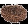 bird nest - Animals -
