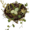 bird's nest - Animals -