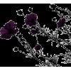 black design - Uncategorized -