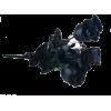 black roses bouquet - Uncategorized -