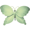 Butterfly - Animali -