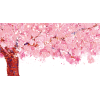 Blossom - Иллюстрации -