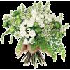 bouquet - Pflanzen -