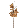 brown leaf - Plantas -