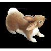 bunny - Articoli -
