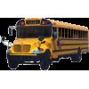 Bus - Vehicles -