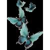 butterflies - Uncategorized -