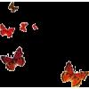 butterflies - People -