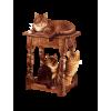 cats - Animais -