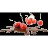 cherries - Lebensmittel -
