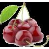 cherry - Plants -