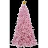 christmas - Pflanzen -