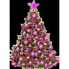 christmas - Piante -