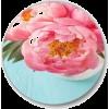 circle art - Items -