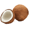 coconut - Fruit -