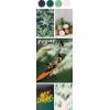 color palette - Ilustracje -
