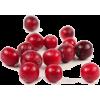cranberry - 水果 -
