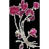 cveće - Plants -