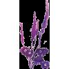 Cvijet Plants Purple - Plants -