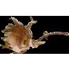 dead flower - Items -