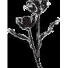 decoração - Plantas -