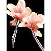 decoração - Plants -