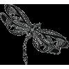 dragonfly - Animals -