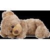 urso - Accessories -