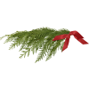 evergreen branch - Items -