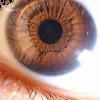 eye ball  by diana parsons no permission - Tła -