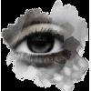 eyes - Illustrations -