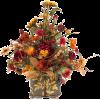 fall - Plantas -