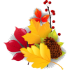 fall - Rastline -