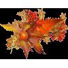 fall - Plants -